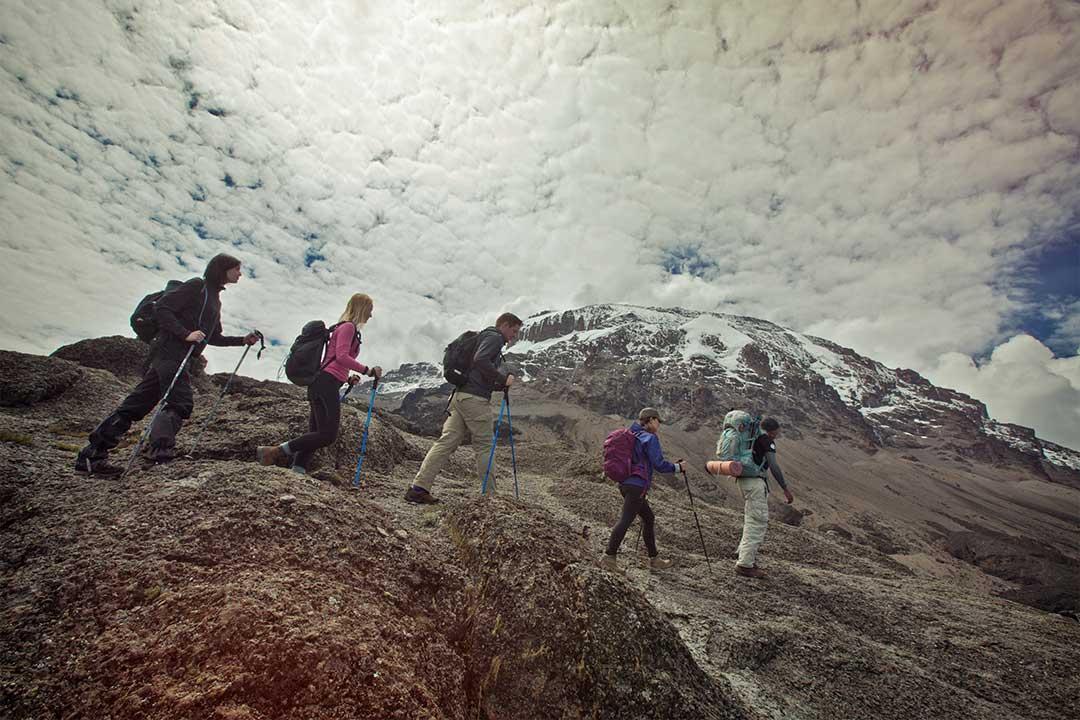 乞力马扎罗登山和塞伦盖蒂游猎旅游